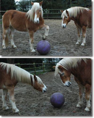 ballspielen0.jpg