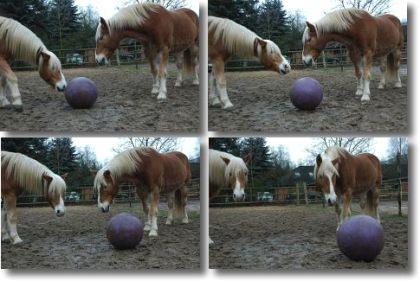 ballspielen1.jpg