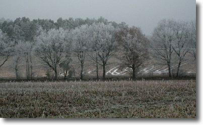 winterspaziergang_2.jpg
