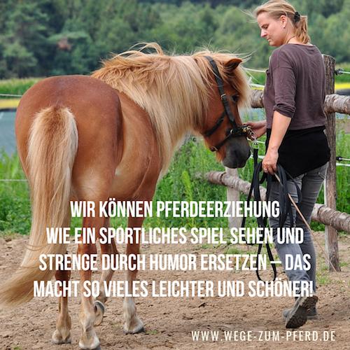 Pferdeerziehung