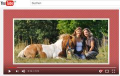 Wege zum Pferd von Babette Teschen und Tania Konnerth