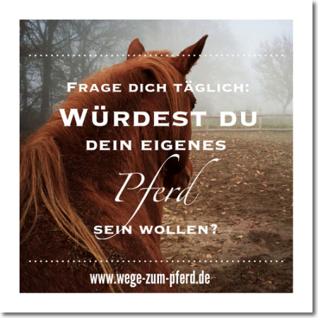 inspiration_wege-zum-pferd_1_2