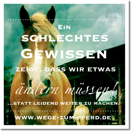 inspiration_wegezumpferd4k