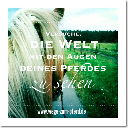 inspiration_wege-zum-pferd_3k