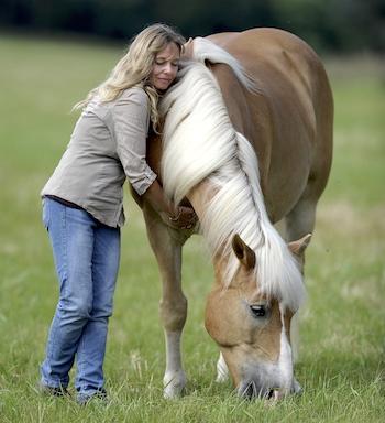 10 Wege zu meinem Pferd