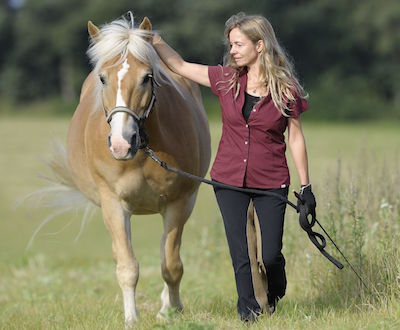 10 Wege zum Pferd