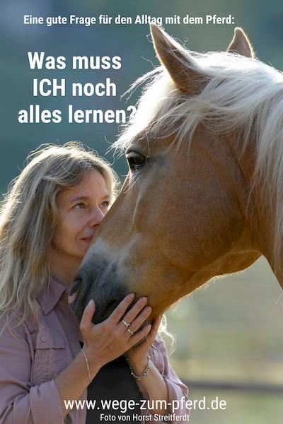 Vom Pferd lernen