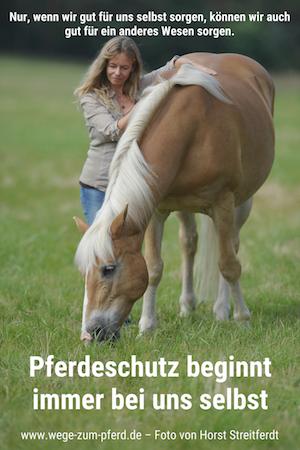 Pferdeschutz beginnt bei uns selbst