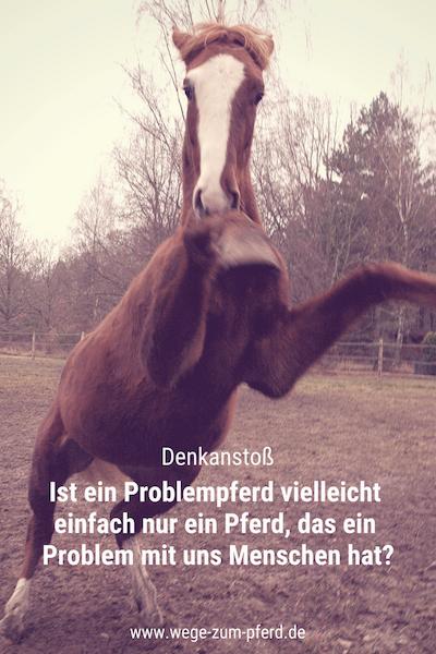 Problempferd