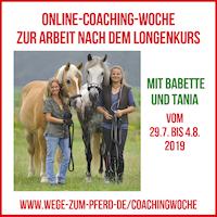 Online-Coaching-Woche zum Longenkurs