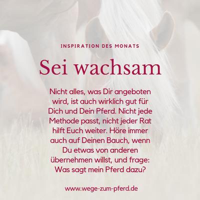 Inspiration des Monats von Wege zum Pferd