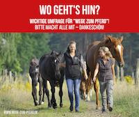 Nutzerumfrage Wege zum Pferd