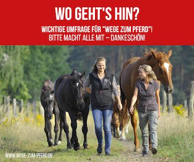 Umfrage für Wege zum Pferd