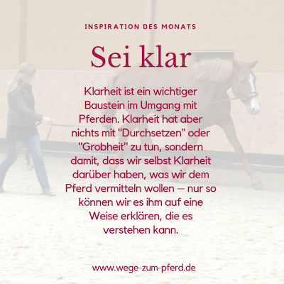 Sei klar – Wege zum Pferd