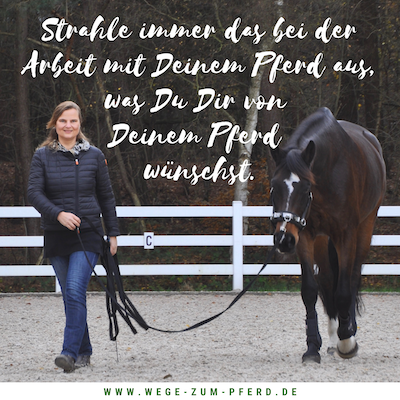Ausstrahlung bei der Arbeit mit dem Pferd