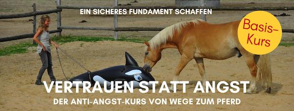 Anti-Angst-Kurs von Wege zum Pferd