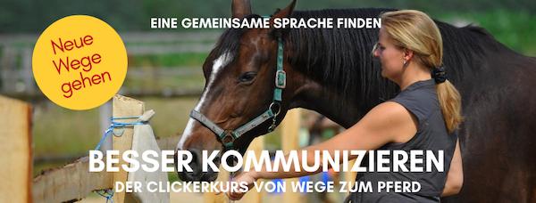 Clickerkurs von Wege zum Pferd