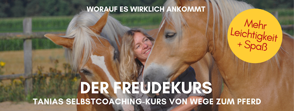 Freudekurs von Wege zum Pferd