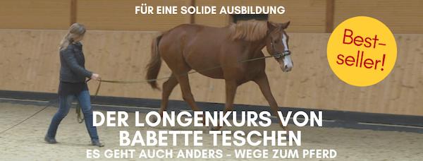 Longenkurs von Wege zum Pferd