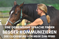 Clickerkurs