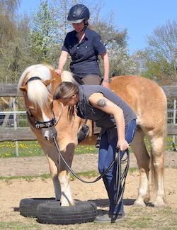 Reitkurs von Wege zum Pferd