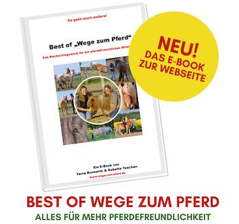Das E-Book zur Webseite